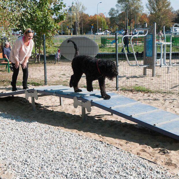 Dog's Playgrounds